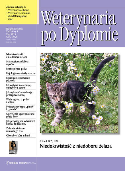Wpd okladka vol16 nr2