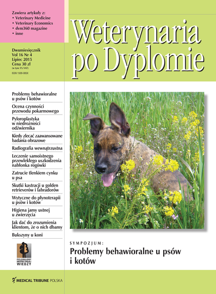 Wpd okladka vol16 nr4 v2 1
