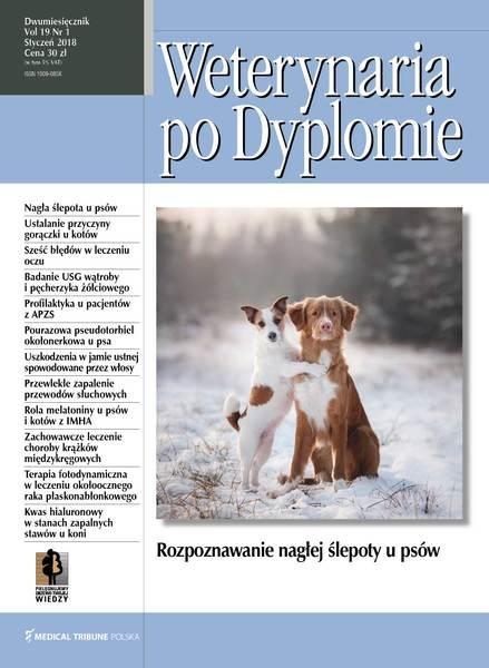Wpd okladka styczen (1) 2018 v2