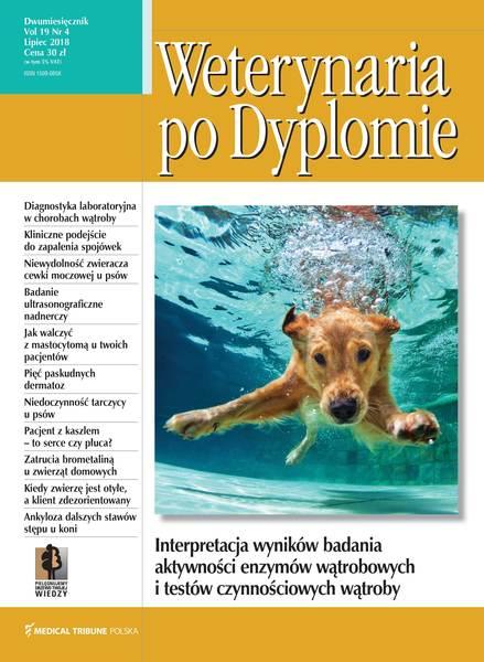 Wpd okladka lipiec (4) 2018