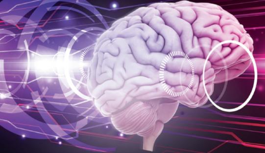 Neuro kv
