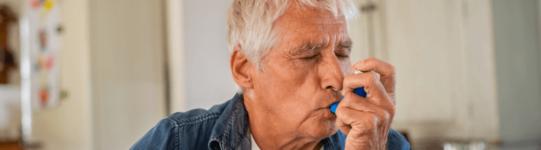 Ger astma
